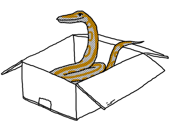 python-in-the-box