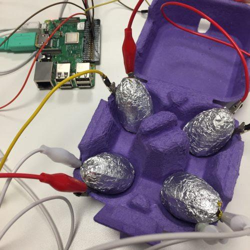 raspberry-pi-eggs-148