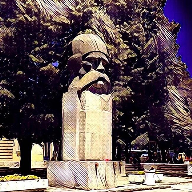 srbija-na-instagramu-valjevo-vuk-pod-prisma
